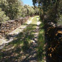 Camino privado hasta el lugar