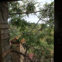 Vista hacia el olivar, antiguamente, también viñedo entre los olivos